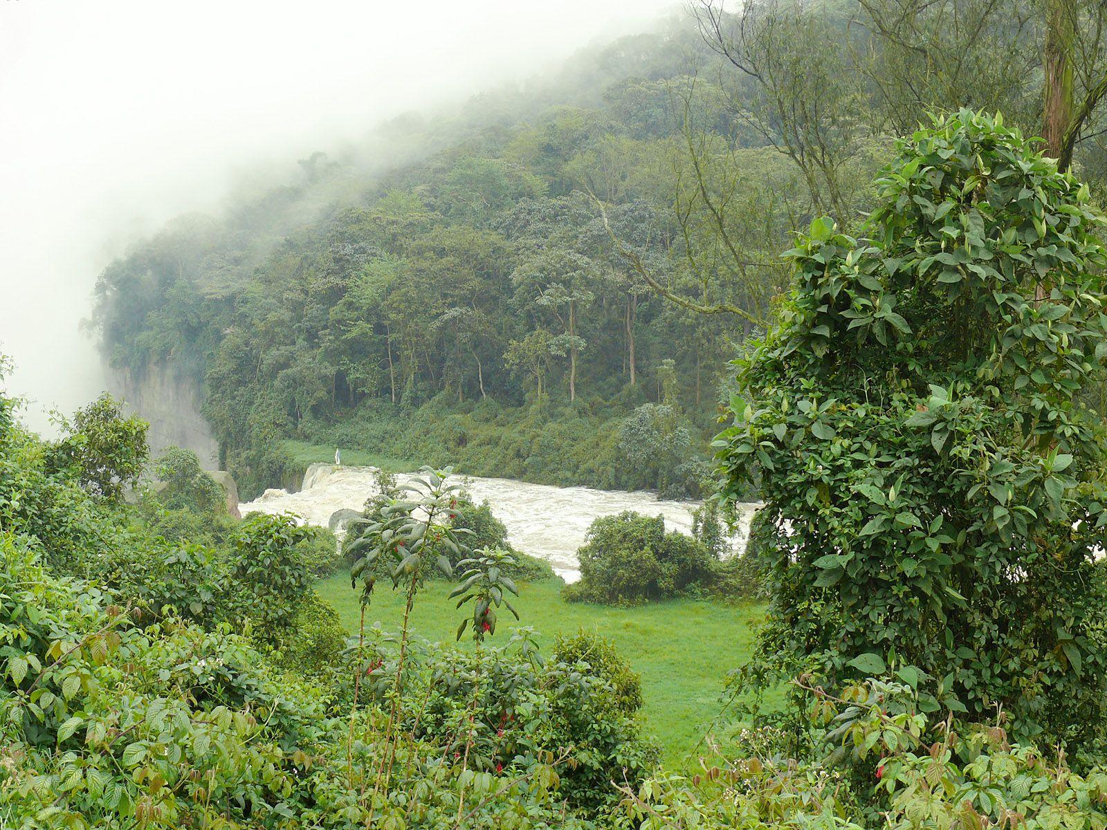Водопад Текендама и джунгли