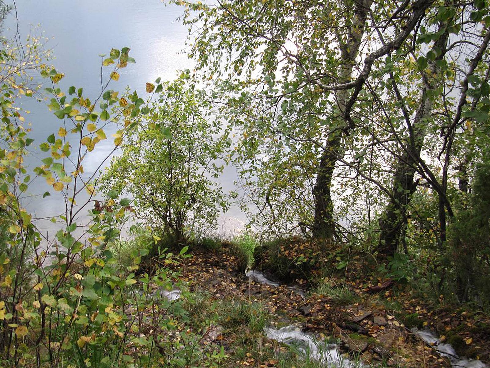 Ручьи водопада Плакун