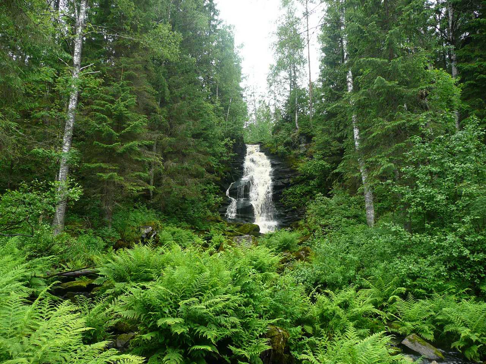 Пейзаж водопада Белые мосты